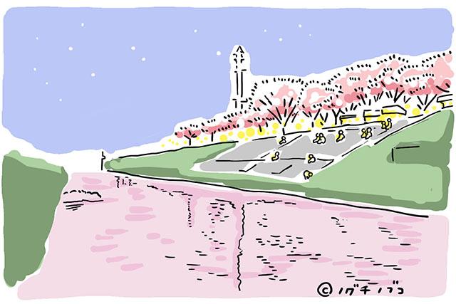 利根運河の夜桜